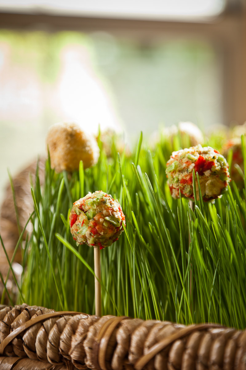 Cheese pops covered in crumbled tortilla chips photographed in wheat grass photographed on location in Denver, CO